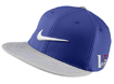 Nike SS2014 Flat Bill Tour Cap Violet Force