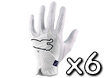Puma 2013 Performance Glove M x6